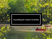 Searching for Nature in Berlin
